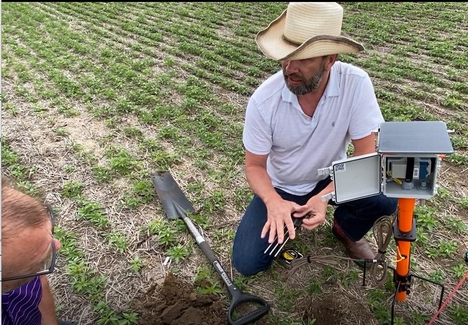 Troy Schmidtke installing soil probe in  a hemp field