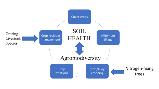 Suggested soil health management practices